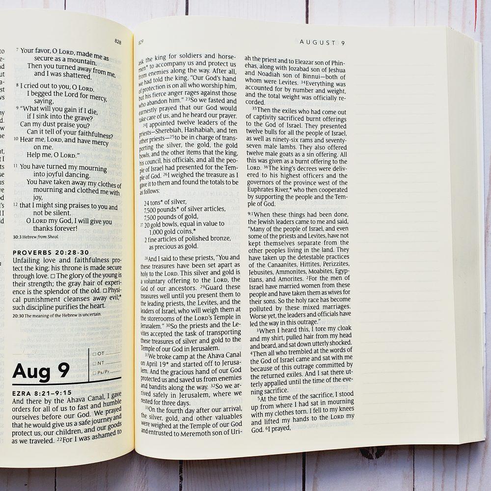 one year bible margin72